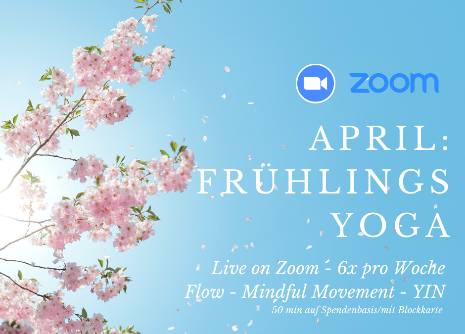 April: Frühlings Yoga 6x pro Woche live on Zoom